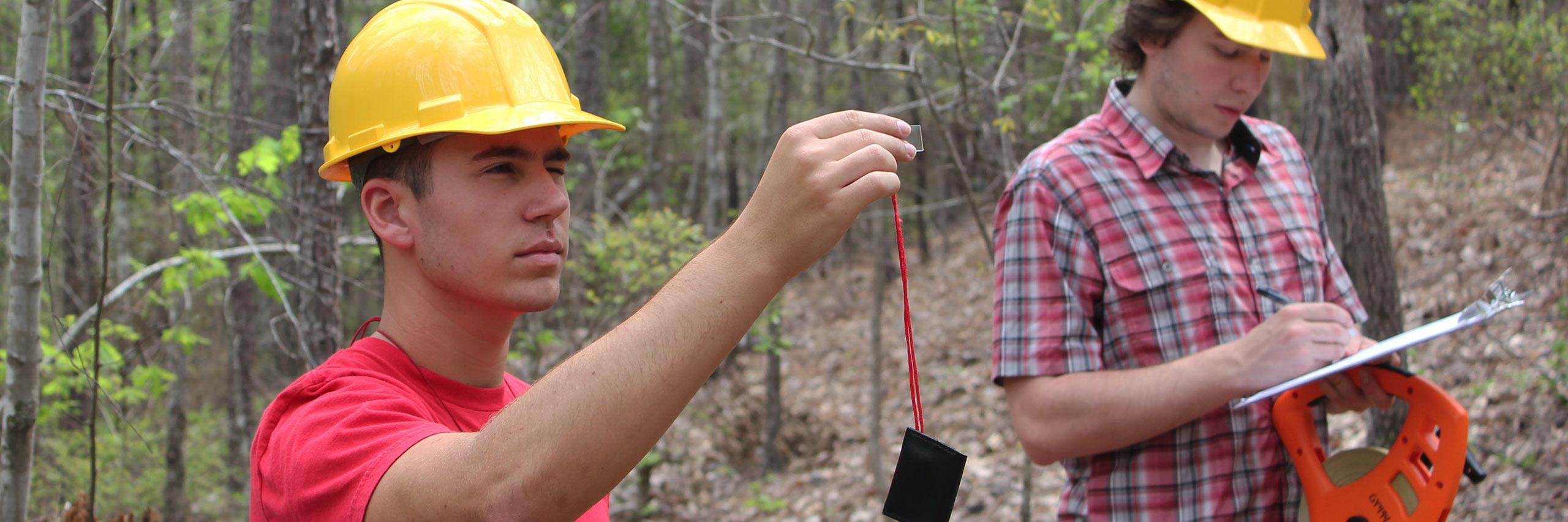 Об утверждении Требований к составу и к содержанию проектной документации лесного участка, порядка ее подготовки